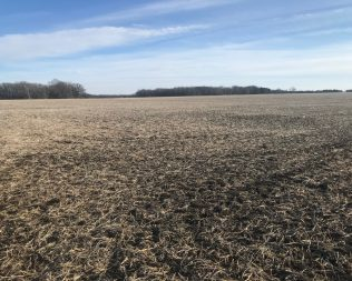 84.02 acres in O'Brien Co @ Auction – $9,200 per acre